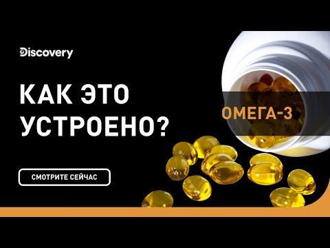 Омега-3 | Как это устроено | Discovery